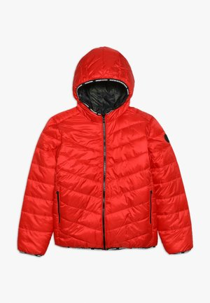 TOINE - Winter jacket - classic red