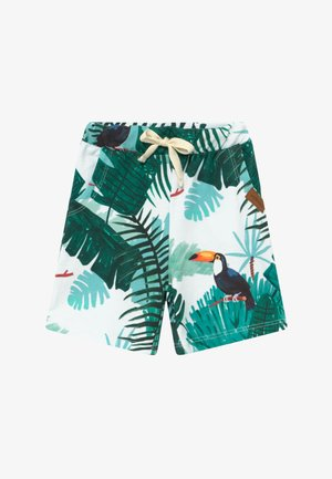 TROPICAL TUCANS - Tracksuit bottoms - green