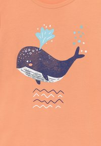 Walkiddy - LITTLE WHALE PLACEMENT 2 PACK - T-shirt con stampa - orange/green - 4