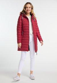 Schmuddelwedda - Winter coat - red - 1