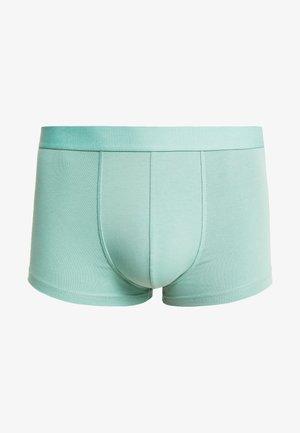 DYLAN TRUNK - Culotte - green mint