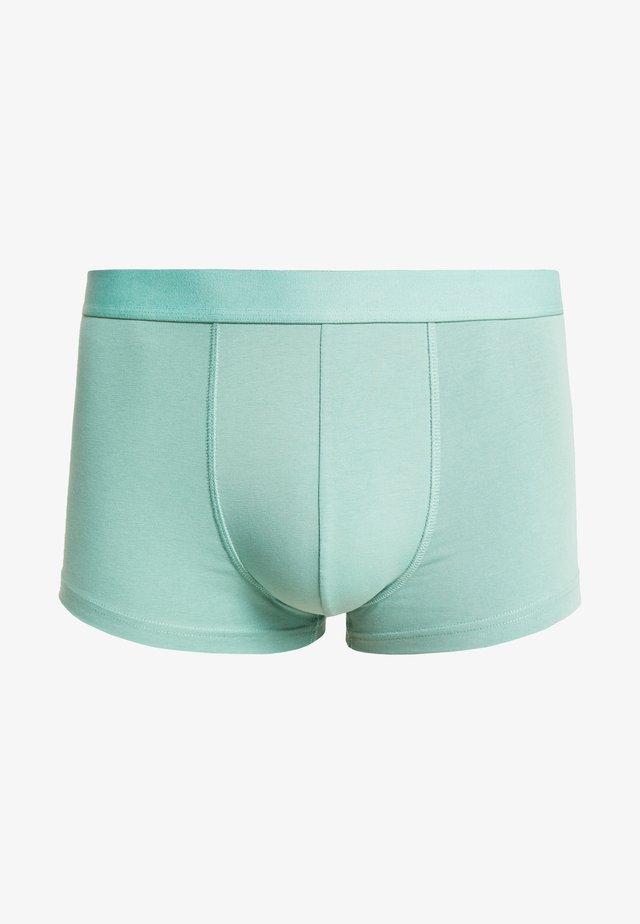 DYLAN TRUNK - Pants - green mint