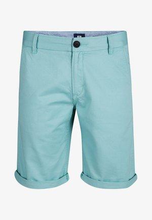 Shorts - ice blue