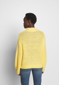Won Hundred - GAZELLE - Strikpullover /Striktrøjer - yolk yellow - 2