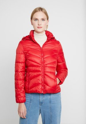 SHORT PUFFER - Light jacket - salsa red