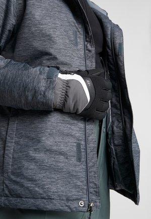 GABINO GLOVE SKI ALPINE - Guantes - magnet