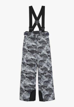 ANDO JUNIOR - Snow pants - grey mountain