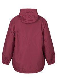 Zizzi - Summer jacket - bordeaux - 1