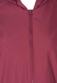 Zizzi - Summer jacket - bordeaux - 2