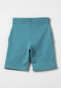 Zalando Essentials Kids - Tracksuit bottoms - brittany blue - 1