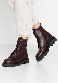 Zign - Platform ankle boots - bordeaux - 0
