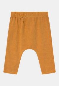 Cotton On - ANDERS 3 PACK UNISEX - Trousers - noir grape/burnt squash/red brick - 1