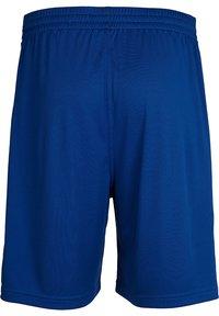 Hummel - Sports shorts - true blue pro - 1