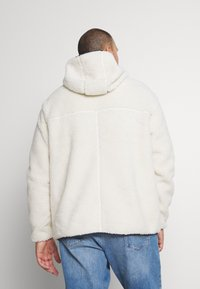 Tommy Jeans Plus - PLUS SHERPA ZIP THRU HOODIE - Fleece jacket - ecru - 2