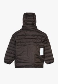 Molo - HAKAN - Winter jacket - brown darkness - 1