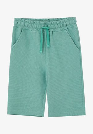 Shorts - turquoise