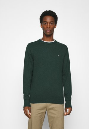 PIMA CREW NECK - Neule - green