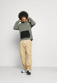 The North Face - TECH HOODIE - Sweatshirt - agave green - 1