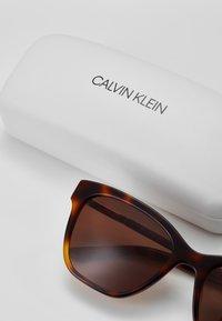 Calvin Klein - Sunglasses - soft tortoise - 3