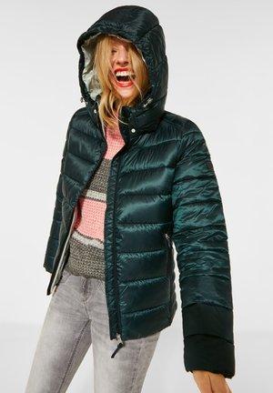 Winter jacket - grün