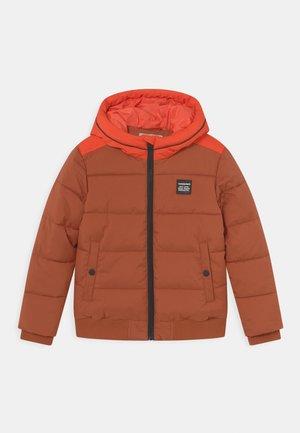TASH - Winter jacket - brown rust