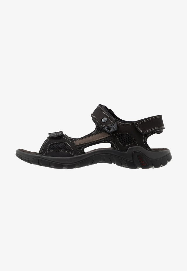 DINO - Walking sandals - black