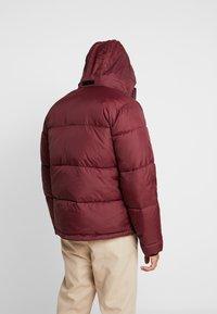 Hollister Co. - PUFFER MOCK BURG - Winter jacket - burgundy - 3