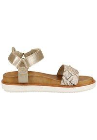 Scapa - SCAPA SANDALEN - Walking sandals - platinum 360 - 6