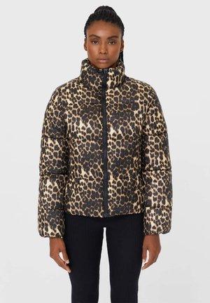 MIT REISSVERSCHLUSS - Down jacket - black