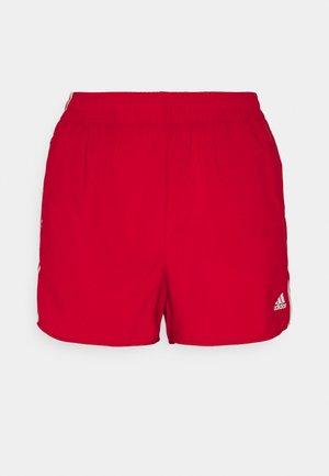 Sports shorts - scarlet/white