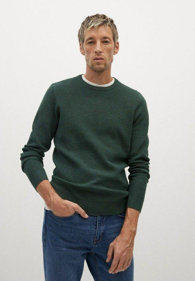 ANTIGUA - Pullover - vert foncé