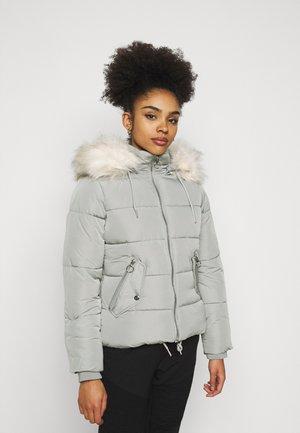 FRIEDA - Veste d'hiver - grey