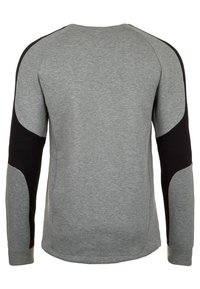 Puma - EVOSTRIPE CREW TRAININGSSWEAT HERREN - Sweatshirt - gray - 1