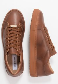 Steve Madden - DINAND - Trainers - cognac - 1