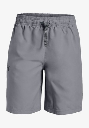 GRAPHIC SHORT - Sports shorts - steel