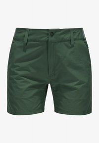 Haglöfs - AMFIBIOUS SHORTS - Outdoor shorts - fjell green - 3