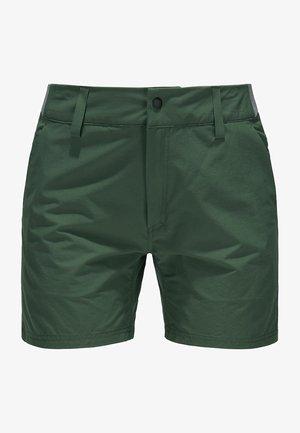 AMFIBIOUS SHORTS - Outdoor shorts - fjell green