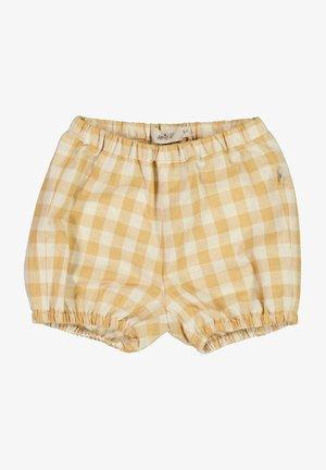OLLY - Shorts - taffy check