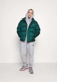 The North Face - GRAPHIC HOOD - Sweat à capuche - light grey heather - 1