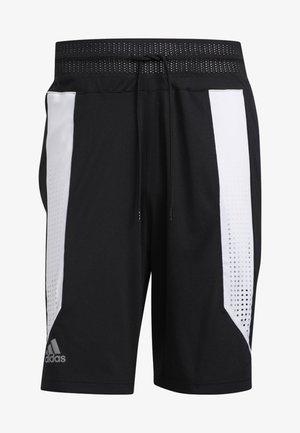 CREATOR 365 SHORTS - Sports shorts - black