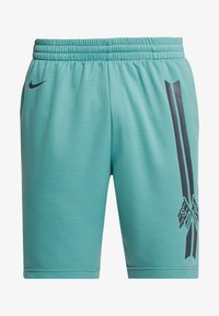 Nike SB - DRY SUNDAY - Shorts - bicoastal/anthracite - 3