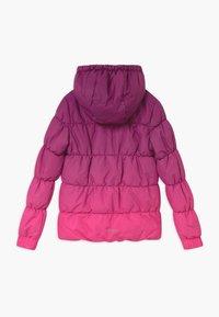 Icepeak - KIANA - Winter jacket - amethyst - 1