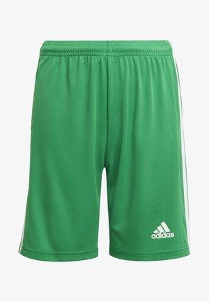 SQUADRA 21 - Sports shorts - green