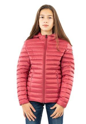CAR - Down jacket - rose