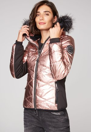 MIT METALLIC LOOK - Winter jacket - metallic powder