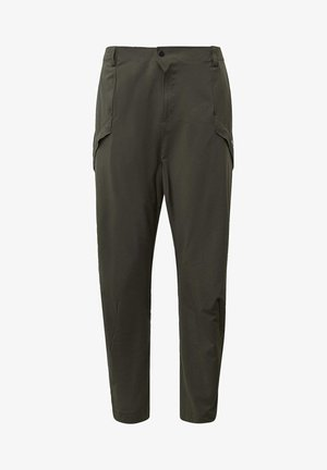 TERREX HIKE TROUSERS - Outdoor-Hose - green