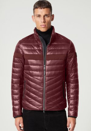 Winter jacket - bordeaux rot