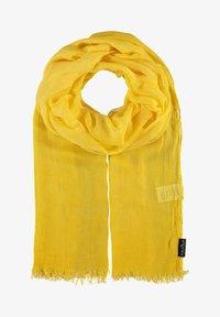 yellow camel
