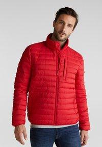 Esprit - RECTHINS  - Winter jacket - red - 0