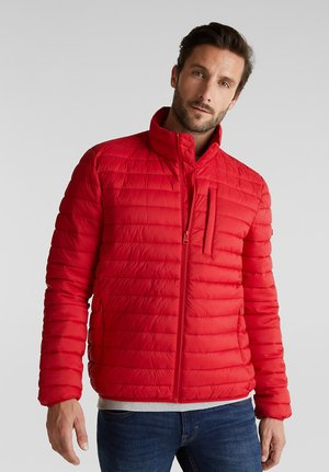 RECTHINS  - Winter jacket - red
